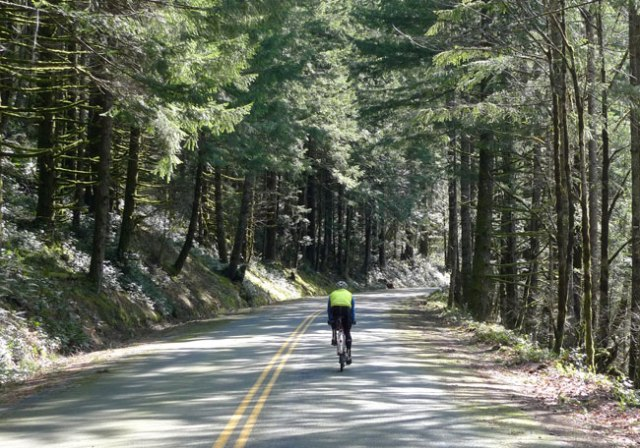 reiter_road