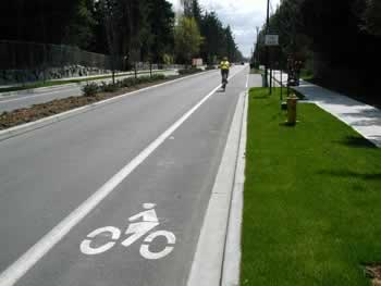Bicycle_Lane_1