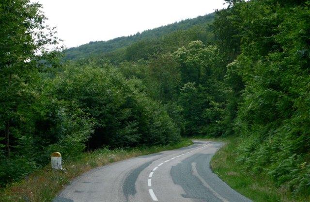 pavezin_road