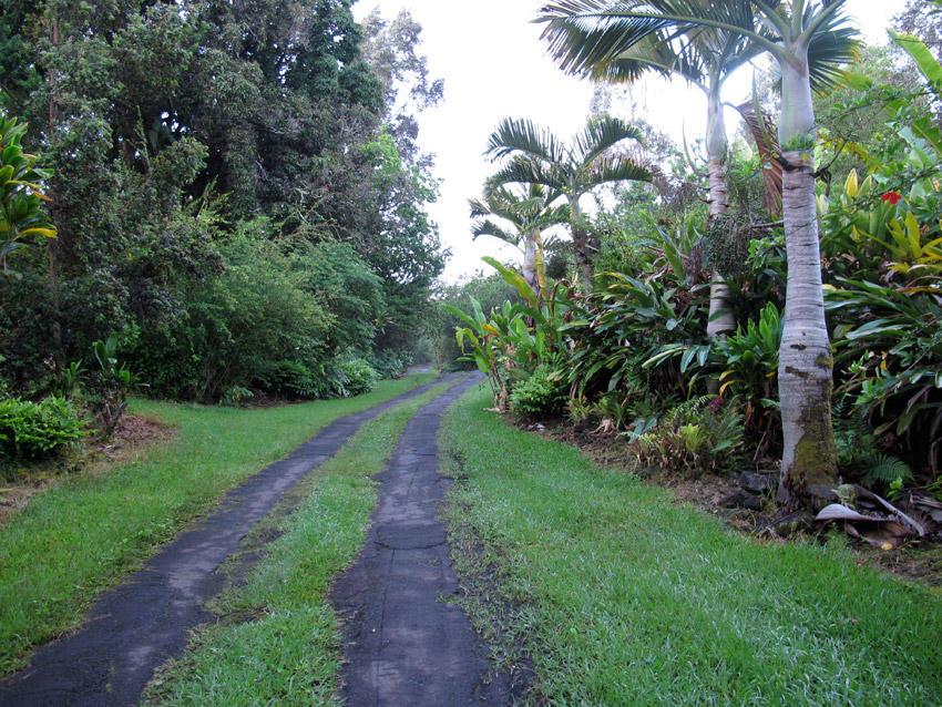 Photo: The first morning, I tried all kinds of small roads, often merely two tracks of asphalt with grass in the middle.