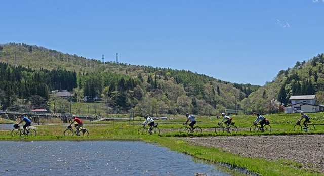 rice_field_cyclists
